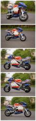 49cc che corre la bici Pocket di Motorcycle/49cc