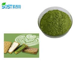مسحوق الشاي الأخضر العضوي Matcha Green Tea من الاتحاد الأوروبي بجودة عالية