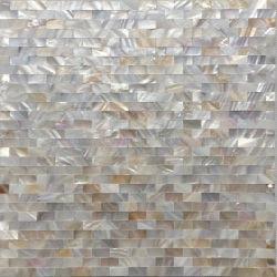 موزيكس رقائق مصقولة من ألواح شل Mosaic مع تصميم مخصص
