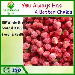 2021 중국에서 냉동 딸기 아이코스(Strawberry IQF) 딸기 냉동 과일