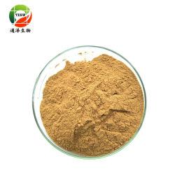 Hot Sale pur et naturel extrait de plante fleurs Honeysuckle10: 1~20 : 1