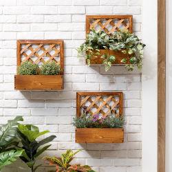 Kleine hangende Bloemenrek Solid Wood kan Asperges en Groene ananas Bloempot