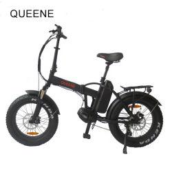 電気バイクを折るQueeneか熱い販売20インチの日本の電気折る自転車250watt En15194のフォールドのバイク