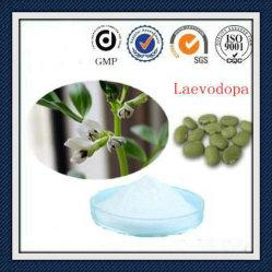 MucunaのPruriensのエキスのLevodopaのLドーパ99%純度の粉