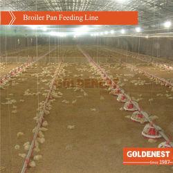 보일러 /Breeder /Laying 암탉 /Bird를 위한 자동적인 가금 농기구를 완료하십시오