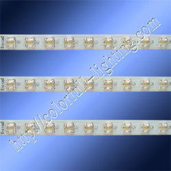 12V 방수 Piranha LED 조명 바(CH-Y2N-F5SX-30-D2)