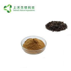 Schwarzer Tee-Auszug-Polyphenol-schwarzer Tee-Auszug-Puder