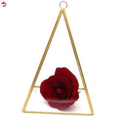 Het hangen van de Geometrische Doos van de Gift van de Houders van de Trouwring van de Piramide van het Glas met Gouden/Zwarte Versiering