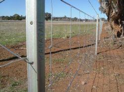 Campo de Segurança Galvanizado Hot-Dipped empurrador agrícolas para veados (XMS141)