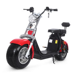 motorino elettrico del motociclo di vendita 1000With1500With2000W del E-Motorino del grande della gomma 2 della rotella motorino elettrico senza spazzola caldo di Citycoco