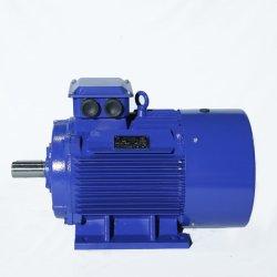Norma GOST Rússia Y2 do motor da estrutura de ferro fundido da Série do Motor eléctrico trifásico com EAC