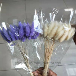 Christams Geschenk-schöner natürlicher Blumenstrauß konservierte trockene Blume Lagurus