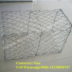 Anping Fournisseur de 80x100mm recouvert de PVC gabions de maille du fil vert