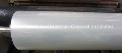 알루미늄 코일을%s PE/PVC/Pet 알루미늄 보호 피막 또는 공장에서 장