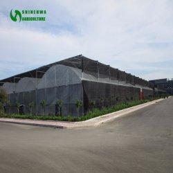 Comités van de Serre van de Plastic Film van het glas de UV Behandelde
