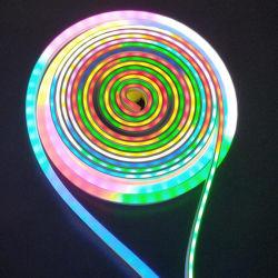 선택 W/R/G/B 색깔을%s 가진 SAA 그리고 세륨에 의하여 통과되는 10*10mm LED 지구 빛 유연한 네온 밧줄