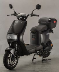 Norme nationale 500W 48V/60V Tianneng vélo électrique de la batterie