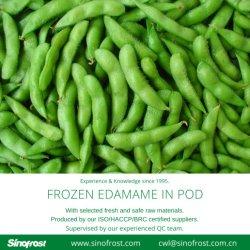 IQF Edamame in baccelli, Edamame congelato in baccelli, fagioli verdi della soia di IQF, fagioli verdi congelati della soia, soia verde di IQF, soia verde congelata, fagiolo della soia di IQF, fagioli congelati della soia