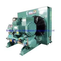 Refrigerante a condensazione per congelatore a camera fredda da 5 HP raffreddato ad aria Unità