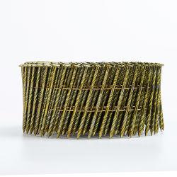 Bobina de paletes de aço inoxidável pregos pernil de Anel