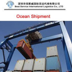 Transport Service (Luftfracht/drücken/Seefracht/Behälter 20GP 40Gp 40HQ) aus