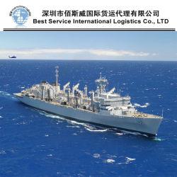 Servicio de transporte y almacenamiento, el transportista, el transporte marítimo internacional (FCL 20''40'')
