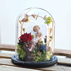 Wholsales Form-beste Geschenke konservierten Liebe des Rose konservierten Blumen-roten Rosen-Engels in der Glasabdeckung