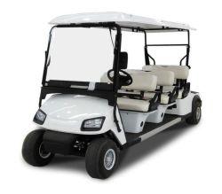Auto Met fouten van het Golf van het Golf van de Prijs van China Wholesales de Slimme Mini Elektrische