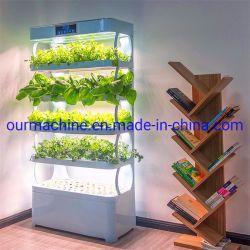 수경법 시스템 수직 도매 실내 약초 재배 정원 장비 Aquaponics 농장