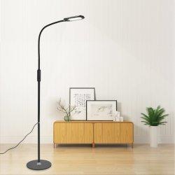 Lampada diritta con la lampada di pavimento più fioca per lettura