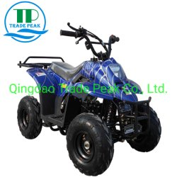 4 Nut ATV van de Vierling 110cc van de slag het Mini