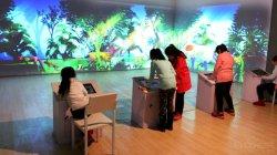 Juegos de Pintar interactivo Gooest centro de la familia