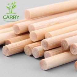 Enjeu En bois naturel, les plantes poussent l'appui de bâtonnets de Cannes de jardin de plantes de bambou