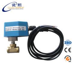 Capteur de débit électronique (thermodifférentiel type)