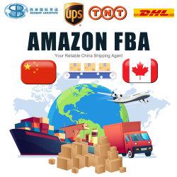 Fracht-Absender-logistischer Service von China nach Kanada