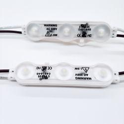 Hochspannungs-LED-Baugruppe 220V 110V wasserdicht für Beleuchtung-Kasten