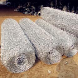 Reticolato della maglia galvanizzato fornitore 8X10cm Rockfall della Cina (RFN)