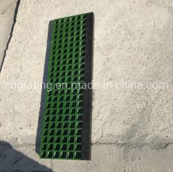 Griglia resistente agli acidi di FRP per il coperchio della grondaia del lavaggio di automobile