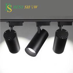 광저우 Flicker Free 100lm/W CRI85 PF > 0.9 2 3 4 위상 와이어 AC85-265V COB 10W 20W 30W 40W 50W 조광 가능 전시실을 위한 레일 LED 자석 트랙 조명