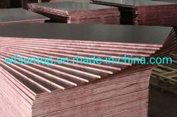 China Fornecedor Senhor melamina WBP filme de cola enfrentados Descofragem contraplacado para construção no exterior