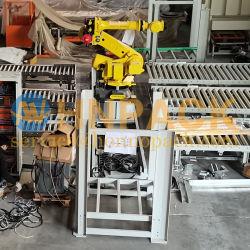 Fanuc 로봇식 포장기를 가진 깔판에 판지 상자 후비는 물건 그리고 장소를 위한 Hennopack 로봇식 팰릿으로 운반 해결책 위에