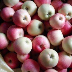 신선한 플라스틱 봉지를 한 레드 갈라 사과 과일을 새로 자릅니다