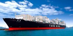 Шэньчжэнь Китая FCL/LCL обслуживания морских перевозок на Manzanillo/Мехико/Гвадалахара океана Экспедитор