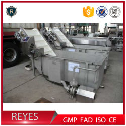 Macchina per cocco macchina per la lavorazione del latte di cocco lavatrice di carne di cocco