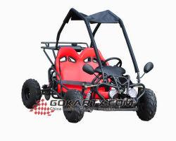 Het dubbele Go-kart Kids van Seats 110cc