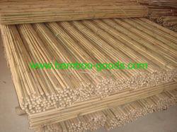 Het Goedkope Droge Natuurlijke Rechte Ruwe Groene Bamboe van uitstekende kwaliteit Polen van Tonkin van de Tuin/Riet/Staken/Stok voor Verkoop