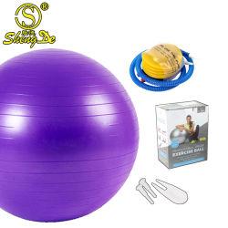 Anti sfera di yoga del PVC di burst di colore di esercitazione su ordinazione ecologica di ginnastica