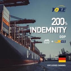 El transporte marítimo internacional DDU DDP Shenzhen al Reino Unido Alemania Francia Beligum dirección de la UE