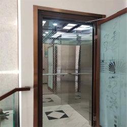 Elevatore domestico residenziale dell'ascensore per persone di APSL-B01 400kg VVVF