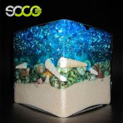 Agua de polímero de cristal sustituto de plantas y flores.